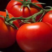 "Tomat ""Vilja"""