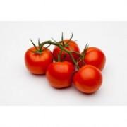 """Tomat """"Malle"""""""